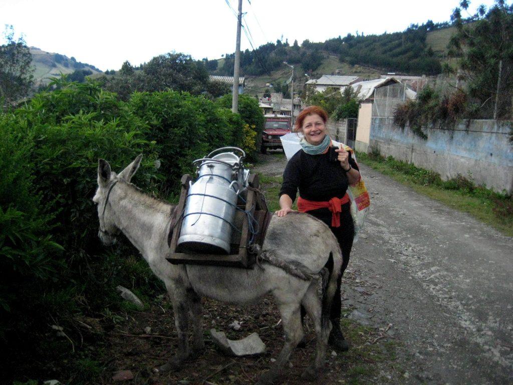 Glücklich ist, wer einen Esel besitzt...