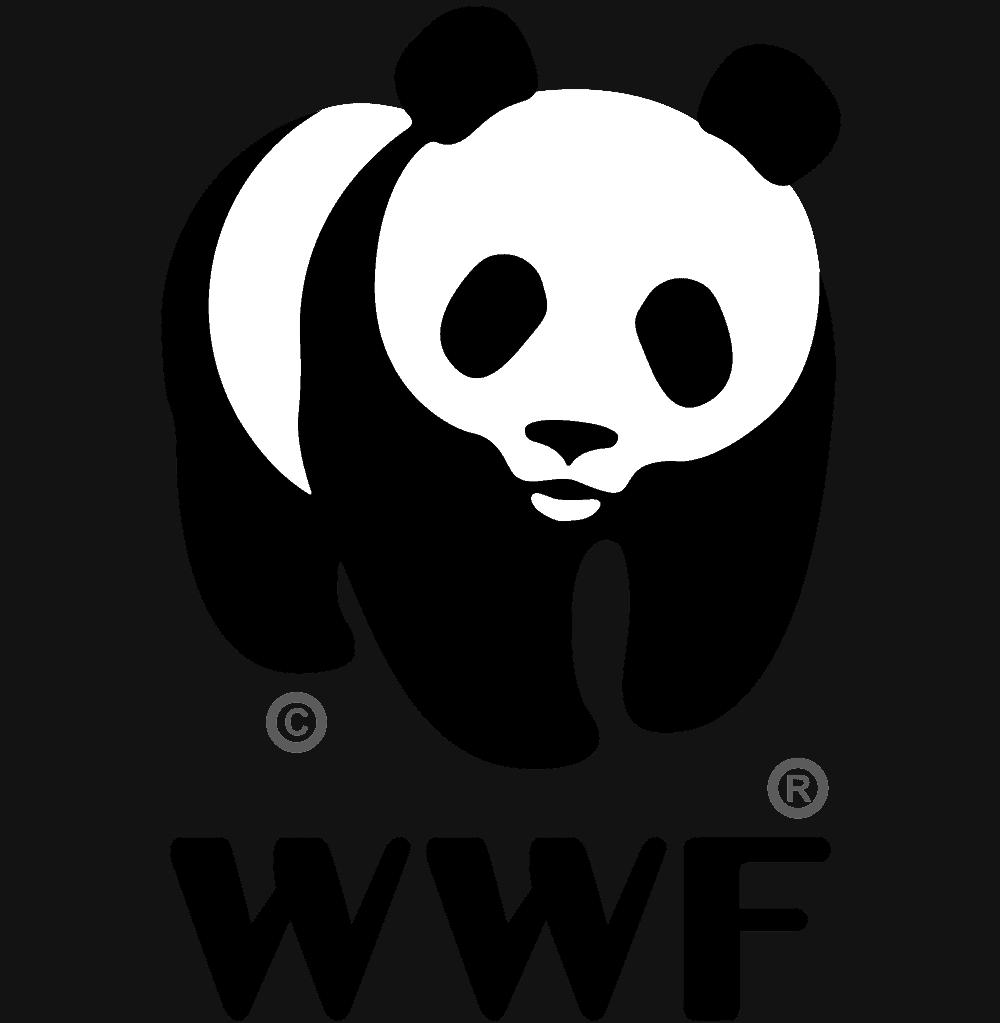 Mach dir die Welt, wie sie dir gefällt! Dein Job als Fundraiser*in beim WWF