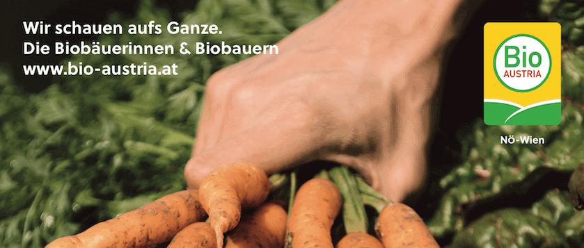 bio austria jobs header